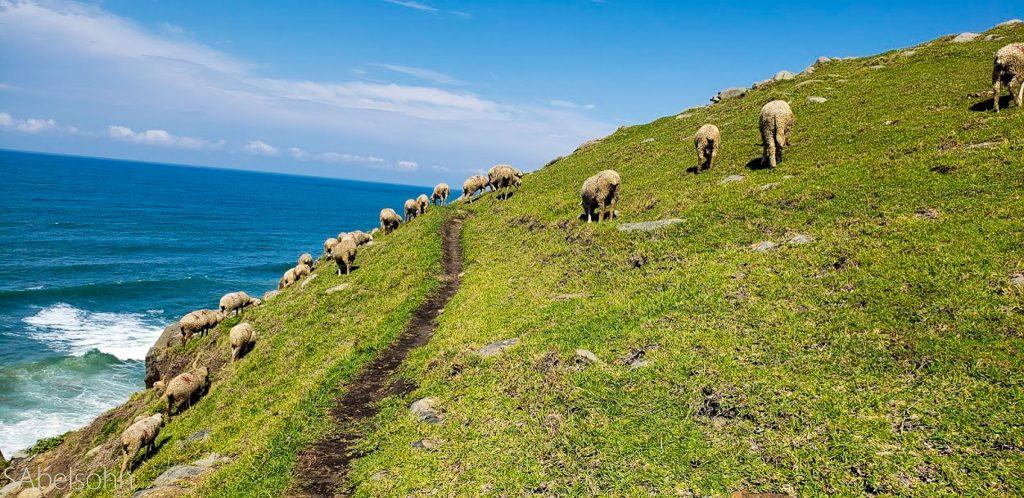 Wild coast coastal trail Eastern Cape