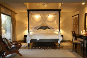 Sabi Sands Bush Lodge Kruger National Park South Africa safari
