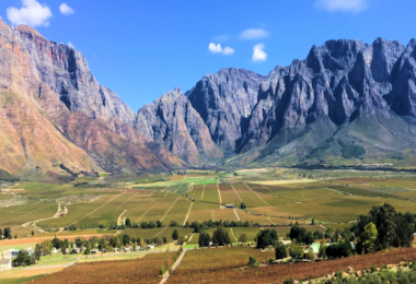 Breeland winery area Cape Town