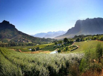 Part of the Cape winlands wine tasting tour.