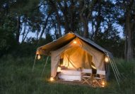 Chobe national Park mobile tent