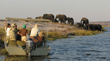 Chobe river Safari