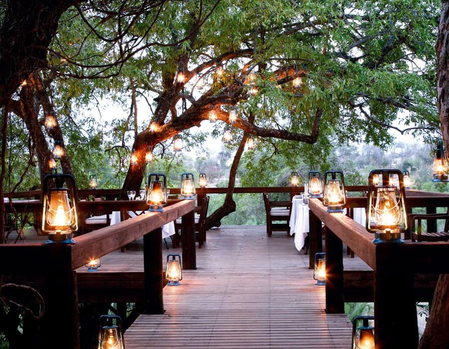 Tree House Londolozi
