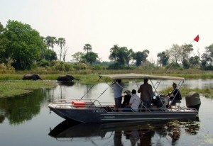 Okavango River Safaris