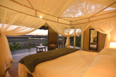 Elephants eye bedroom view Hwange Zimbabwe Safari