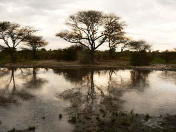 Deception Valley Lodge Botswana Safari