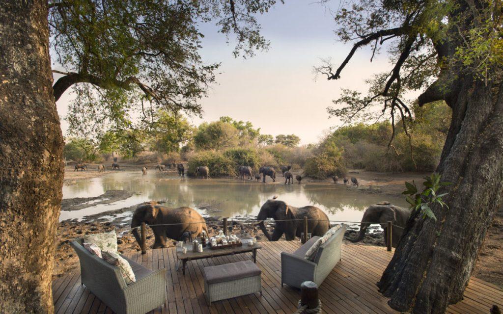Kanga Camp Mana Pools Zimbabwe Safari