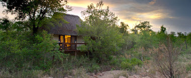 Little bush camp sabi sabi
