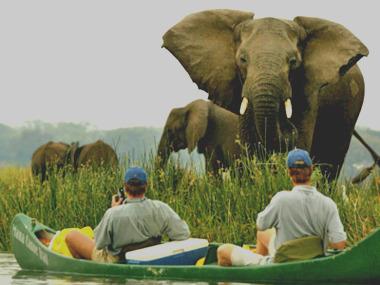 Mana Pools canoe Safari.
