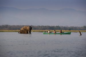 Mana pools canoe day activity Zimbabwe Safari
