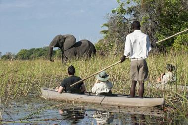 mokoto vegan safari Botswana Safari