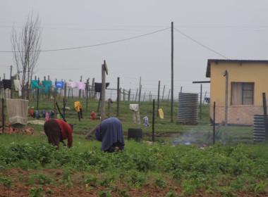 Quno Nelson Mandela's Village