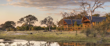 Savuti Elephant camp Botswana
