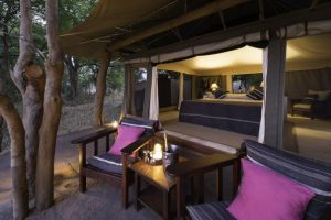 Tena-Tena-South-Luangwa-Zambia-walking-Safari