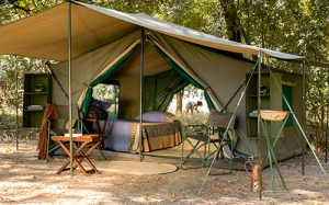 Walking safari mobile tents Zambia