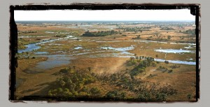 Selinda camp Botswana safari