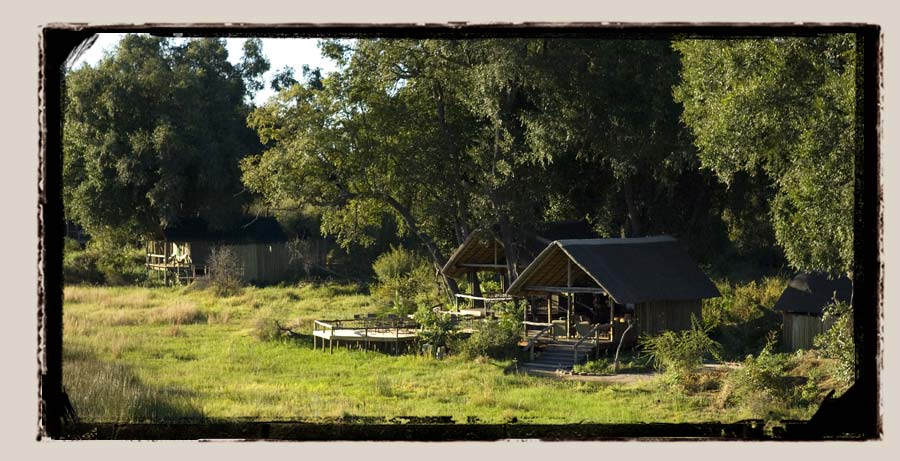 Duba Plains Okavango Delta Botswana safari