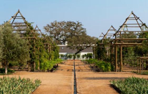 Babylonstoren organic gardens