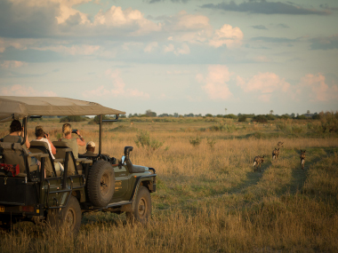 Duba Plains Botswana Safari