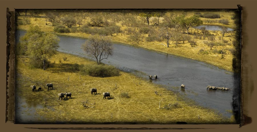 Selinda Explorer Camp Selinda Botswana Safari