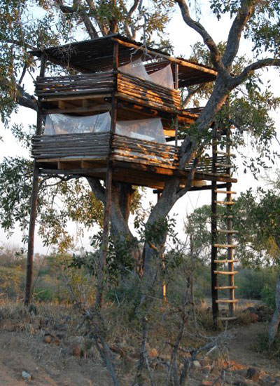 Umlani Tree House