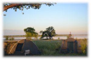 Vegan safari tents